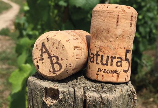 Natura50 bouchon de champagne naturel et écologique